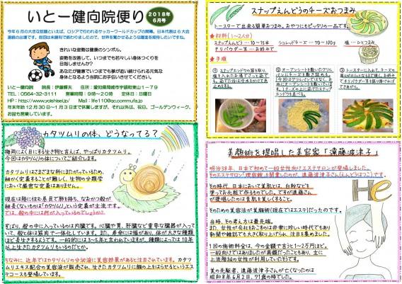 岡崎市の整体【いとー健向院】の院内便り(6月号)